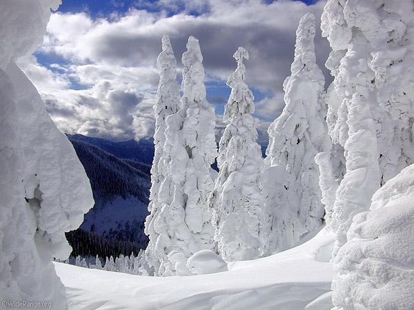 Snow Blobs