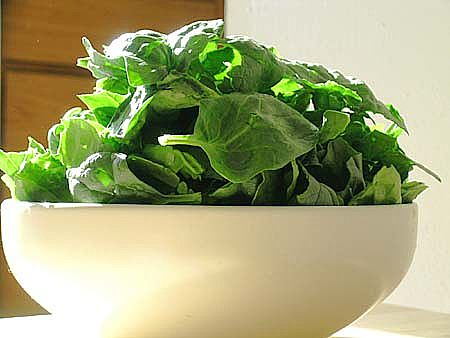 spinach-main_full